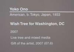 Yoko1200_2