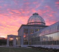 Conservatorysunset